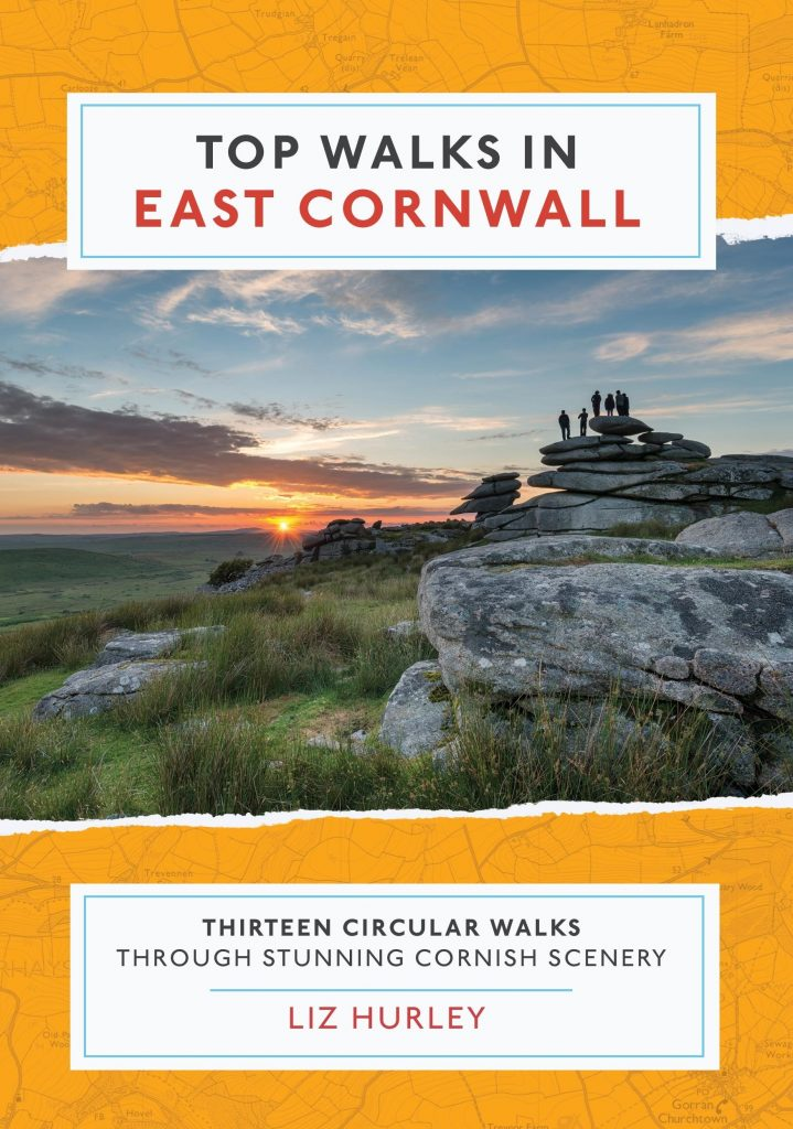 Cover of the book Top Walk in East Cornwall that I worked on